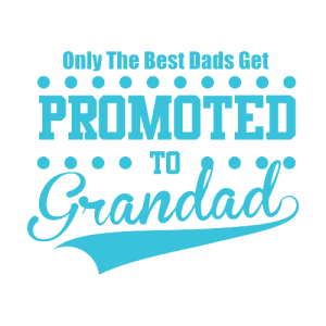Promoted to grandad t-shirt