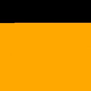 Cunning Stunts - Funny T Shirt