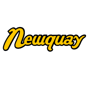 Personalised Newquay Holiday T Shirts