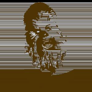 Wookie T Shirt