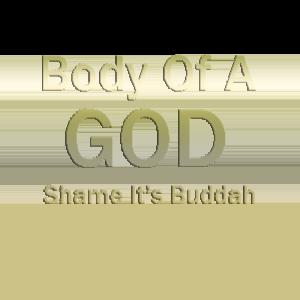 Shame its buddah T Shirt