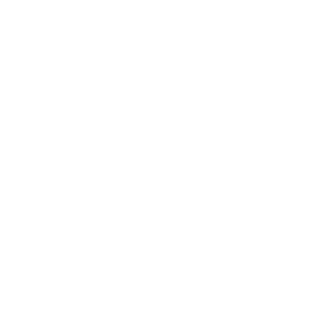 Bostin