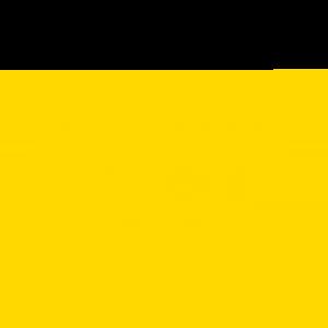 Established - Custom Birthday T Shirt