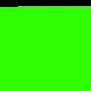 Personalised Malia T Shirts