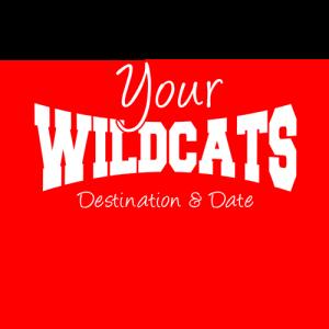 Wildcats Hen Party T Shirt