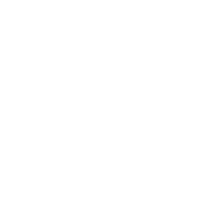 Bazinga Elements