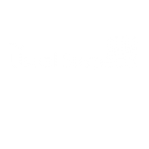The Usual suspects Band