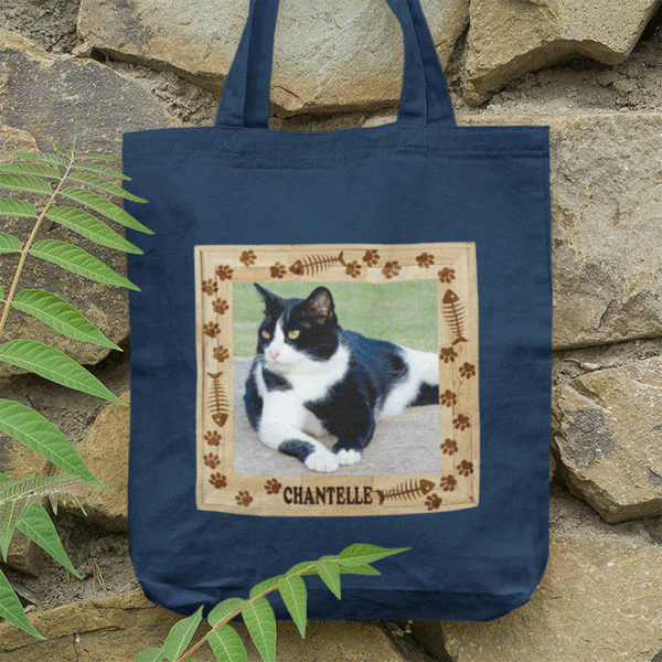 You cat photo on a bag